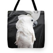 Elvis The Cockatoo II The Profile Shot Tote Bag