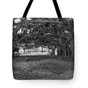 Embraced By Trees Tote Bag