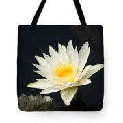 Embracing The Day... Tote Bag