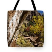 Emerald Falls Zion National Park Tote Bag