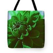 Emerald Green Beauty Tote Bag