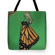 Emergence I Tote Bag by Clarence Holmes