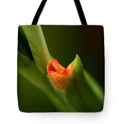 Emerging Beauty - Gladiolus Tote Bag