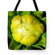 Emerging Dahlia Bud Tote Bag
