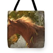 Emerging Free Tote Bag