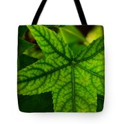 Emerging Greens Tote Bag