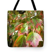 Emerging Red Tote Bag