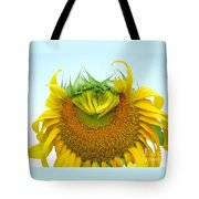 Emerging Sunflower Tote Bag