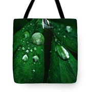 Emerald Rain Tote Bag