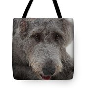 Irish Wolfhound IIi Tote Bag