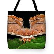Emperor Gum Moth - 6 Inch Wing Span Tote Bag
