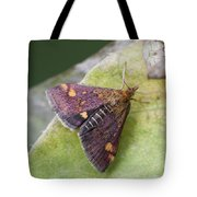 Emperor Moth Tote Bag