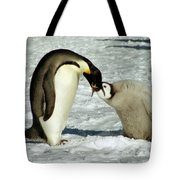 Emperor Penguin Chick Feeding Tote Bag