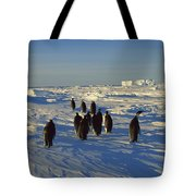 Emperor Penguin Group Walking On Ice Tote Bag
