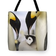 Emperor Penguin Parents With Chick Tote Bag