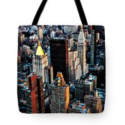 Empire View Tote Bag
