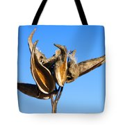 Empty Milkweed Pods Against Blue Sky Tote Bag