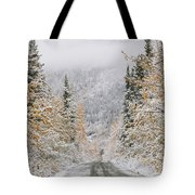 Empty Road Passing Through A Forest Tote Bag