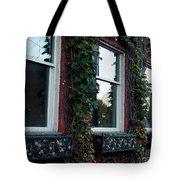 Empty Windows Tote Bag