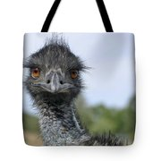 Emu Gaze Tote Bag