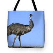 Emu Portrait Sturt National Park Tote Bag