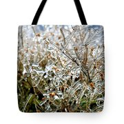 Encased In Ice Tote Bag