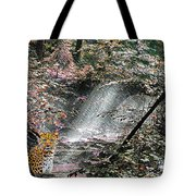 Enchanted Forest - Featured In Wildlife Group Tote Bag