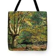 Enchanted Forest Tree Tote Bag