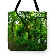 Enchanted Green Path Tote Bag