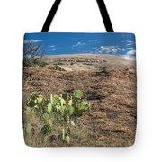 Enchanted Space Tote Bag