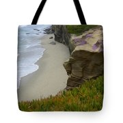 Enchanted Spaces California La Jolla Tote Bag