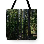 Enchanted Trail Tote Bag