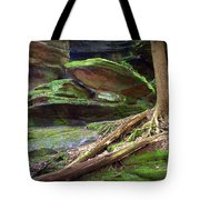 Enchanting Tote Bag