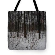 Enclave Tote Bag