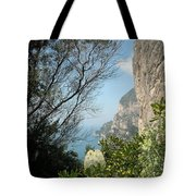 Enclave Of Excellence Tote Bag