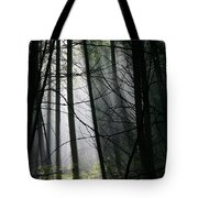 Encounters Of The Vermont Kind  Tote Bag