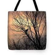 End Of The Day  Red Tailed Hawk Tote Bag