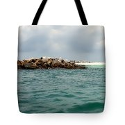 End Of The Jetty Tote Bag