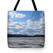End Of Winter 2011 Tote Bag