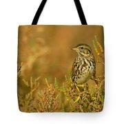 Endangered Beldings Savannah Sparrow - Huntington Beach California Tote Bag