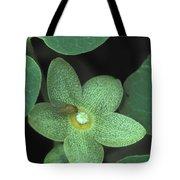 Endangered Flora Tote Bag