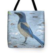 Endangered Scrub-jay Tote Bag