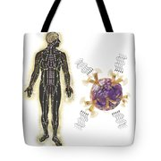 Energy Meridians Of The Human Body Tote Bag