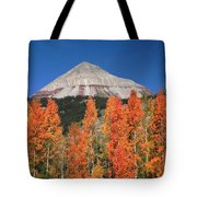 2d10688-engineer Mountain In Fall  Tote Bag