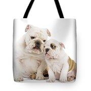 English Bulldog, Adult And Puppy Tote Bag