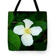 English Dogwood Blossom Tote Bag