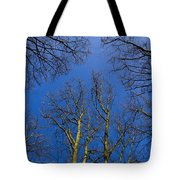 English Forest Trees Tote Bag
