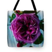 English Rose - Purple Rose - Fragrant Rose Tote Bag