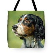 English Setter Dog Tote Bag