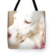 English Setter In Natural Light Tote Bag